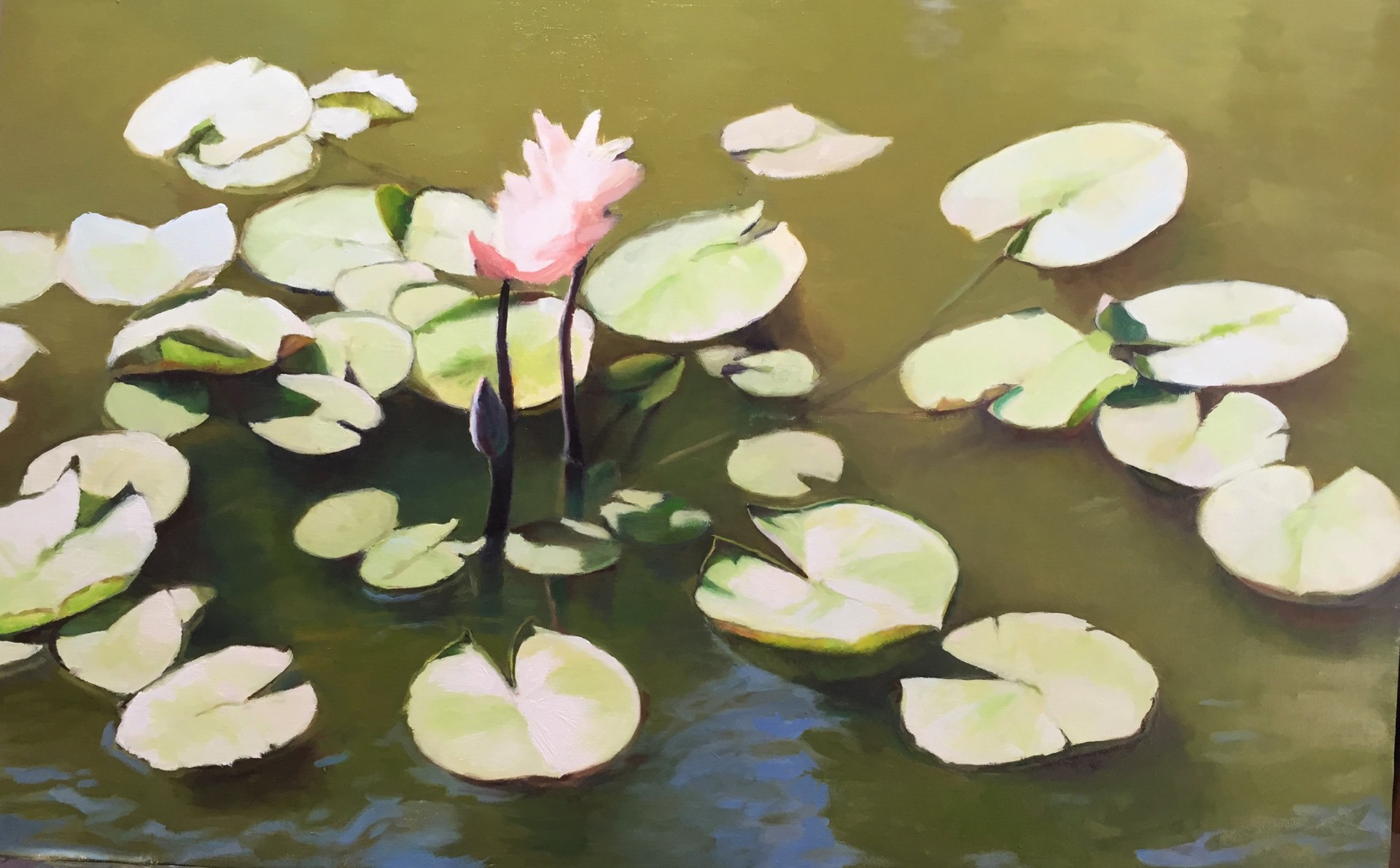 Water Lilies at Noon
